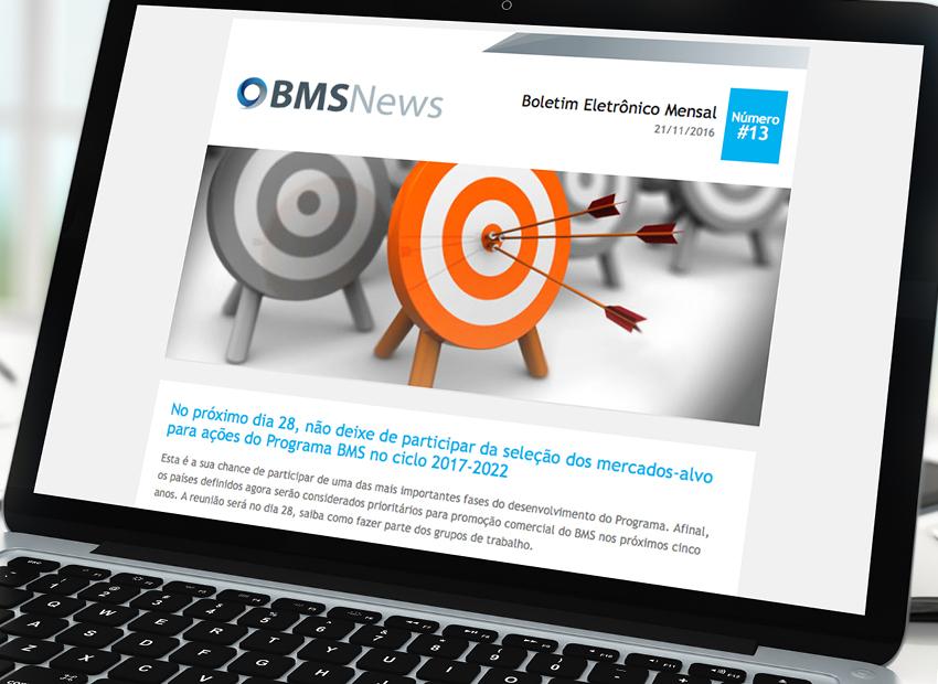 BMS News-#13
